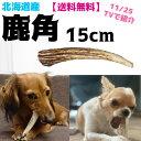 小型犬用S15cm★北海道産★鹿の角【送料無料】犬のおもちゃ/犬のおやつ 『エゾシカの角』誕生日プレゼントやしつけ・…