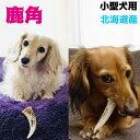 北海道産★小型犬用約10cm以下×1本お試しサイズ★鹿の角 【送料無料】犬のおもちゃ/犬のおやつ 『エゾシカの角』誕…