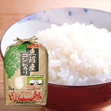 魚沼産コシヒカリ5kg/送料込み(北海道・九州・沖縄は追加送料発生します)/年内のお届けは12/17迄となります。