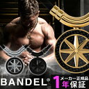 BANDEL カーボン エディション ネックレス ヘルスケア 磁気ネックレス バンデル 医療機器 血行改善 筋肉回復 バランス…