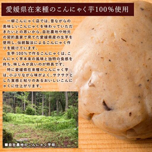 【送料無料】こんにゃく米蒟蒻ご飯80g×7袋の究極サポート!蒟蒻米通常便配送送料無料お試し1週間
