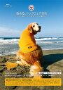 【ALPHAICON アルファアイコン】【大型犬用】犬 Tシャツ/ドッグガード(2011モデル)/ドッグウェア/犬服/犬 服/レインウェア/アルファアイコン/A...