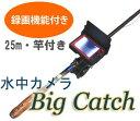 Bigcatch thum3