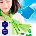 Eco&Coolアイスパッドプレミアム