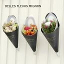 ベルフルールミニョン BELLES FLEURS MIGNON ドライフラワー ミニブーケ 花束 花材 花 インテリア 壁飾り