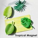 トロピカル マグネット TROPICAL MAGNET マグネット 磁石 葉っぱ 観葉植物 QUALY ブランド 4個セット