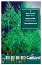 【人気商品】ディル OFFICINAL(イノンド) (No.10000)[ハーブ 種 種子 家庭菜園] 【HLS_DU】10P03Sep16