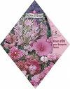 【人気商品】ピンクフラワーガーデンMIX(No.418)[ガーデニング 種 ミックス 種子 園芸] 【HLS_DU】10P03Sep16