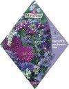 【人気商品】パープルフラワーガーデンMIX(No.518)[ガーデニング 種 園芸 ミックス 種子] 【HLS_DU】10P03Sep16