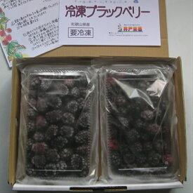 冷凍 ブラックベリー 1kg・500g×2パック 国産 和歌山県産 自家栽培 完熟 冷凍果実 冷凍デザート 冷凍フルーツ スムージー アサイー Blackberry