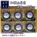 ブルーベリー 完熟 生果 80g×6パック 国産 和歌山県産 フレッシュブルーベリー