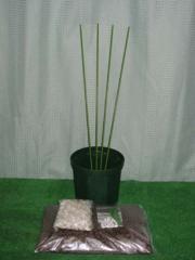 ブルーベリー簡単鉢植え栽培キット 7号鉢用6点セット