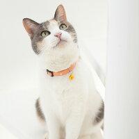 【猫】【首輪】iCatアイキャットカジュアルカラーキャンディードット。3.5kgMIXのオトちゃんはオレンジを着用