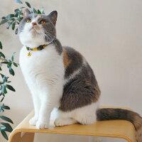 【子猫】【首輪】iCatアイキャットキティカラーツイルチェック。商品画像3。