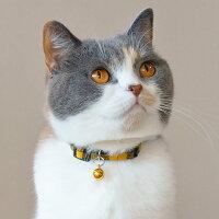 【子猫】【首輪】iCatアイキャットキティカラーツイルチェック。商品画像4。