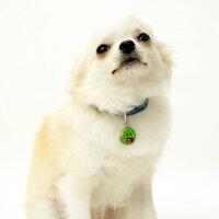 【迷子札】【犬】【猫】iDog&iCatオリジナルネームタグ迷子札アングリーベア。商品画像3。