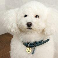 【迷子札】【犬】【猫】iDog&iCatオリジナルメタルネームタグ迷子札白プードル。アンティーク風で上品な輝きです。