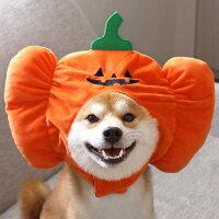 かぼちゃと同じ表情でにんまり