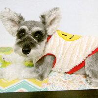 ミニチュアシュナウザー5.2kgのミミちゃんはベージュのLを着用犬服タンクトップ