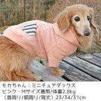 ダックス2.8kgのモカちゃんはピンクのMを着用