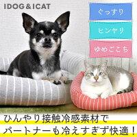 IDOG&ICATスクエアベッドストライプSサイズ。