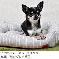 小型犬にぴったりの小さめサイズ