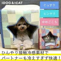 IDOG&ICATひんやりスターチェックキューブ。
