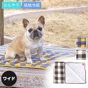 【 犬 猫 ブランケット マット 】IDOG&ICAT ひんやりキルトマット ワイド チェック【 あす楽 翌日配送 】【 夏 冷感 …