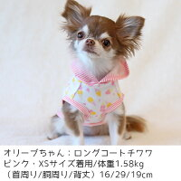 チワワ1.58kg(首16/胴29/丈23cm)のオリーブちゃんはピンクのXSを着用