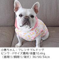 フレブル10.4kg(首36/胴36/丈345cm)のはるたくんはピンクのFを着用