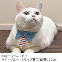MIX4.0kgのえのきちゃんはライトブルーのSを着用