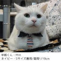 MIX4.4kgの半紙くんはネイビーのSを着用
