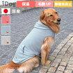 iDog中大型犬用Botaniaりんごミュージックパーカー保湿ツヤUPアイドッグ