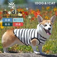 iDogmedi+抗菌ボーダータンクアイドッグ。