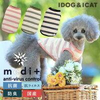 iDogmedi+抗菌ボーダータンクアイドッグ