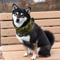 柴犬8.5kg(首34cm)の凪ちゃんはカモフラLを着用