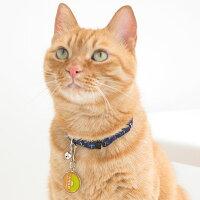 【迷子札】【犬】【猫】MIX4.6kgのはちみつくんはキウイのMを使用