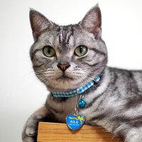 【迷子札】【犬】【猫】アメショー4.4kgのノエルくんはブルーを使用