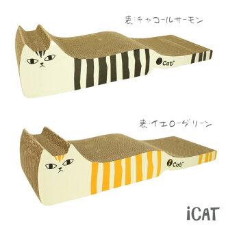 研磨iCat眼睛猫原始物指甲,并且是島猫長