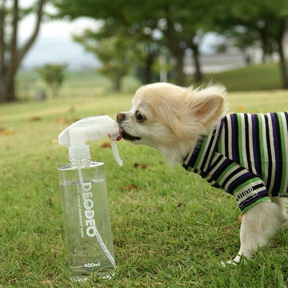 【ペット 消臭】 iDog&iCat DEO DEO デオデオ 400ml【あす楽対応 翌日配送】 【消臭剤 抗菌 除菌 衛生用品】【匂い 臭い ニオイ】【icat i dog】【体臭 スプレー】