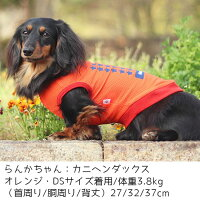 カニヘンダックス3.8kgのらんかちゃんはオレンジのDSを着用