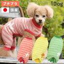 【30周年決算感謝SALE★】【 犬 服 パジャマ 】iDog 星とクマのかすれボーダーパジャマ アイドッグ メール便OK【 あす…