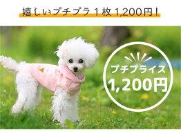 嬉しいプチプラ1,200円!(税抜)