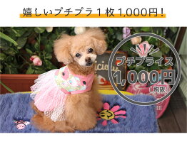 嬉しいプチプラ1000円