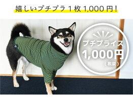 嬉しいプチプラ1枚1000円