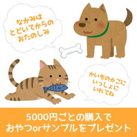 5000円ごとのご購入でおまかせおやつorフードサンプルをプレゼント。種類は選べません。