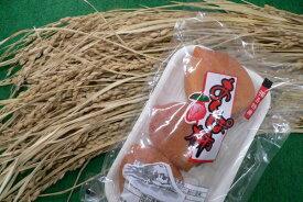 【福島産 あんぽ柿 (蜂屋柿)1パック 約230g(3〜6コ)×4入セット×1箱】