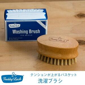洗濯用ブラシ FL-149 フレディレック フレディレック 洗濯ブラシ 毛ブラシ 家事