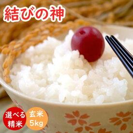 結びの神 令和2年産 三重県産三重23号 玄米5kg 送料無料 米ぬか無料 精米無料 白米 無洗米 3分づき 5分づき 7分づき 胚芽米 むすびのかみ
