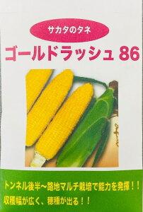 トウモロコシ 種 とうもろこし 種子 中早生 ゴールドラッシュ 86日 30ml